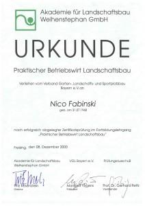 Betriebswirt_Nico