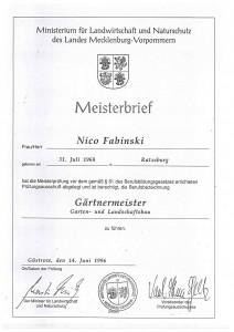 Meisterbrief_Nico